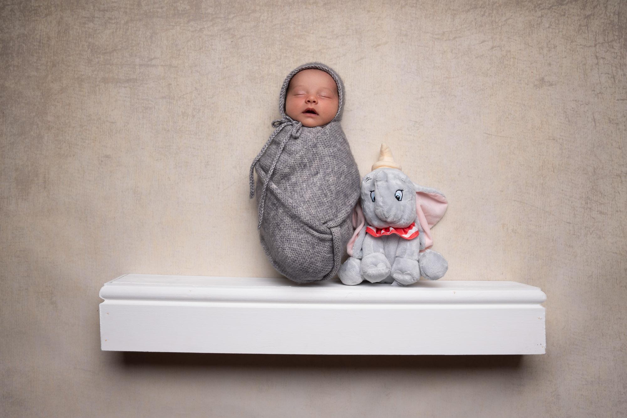 Jumbo disney newborn photography